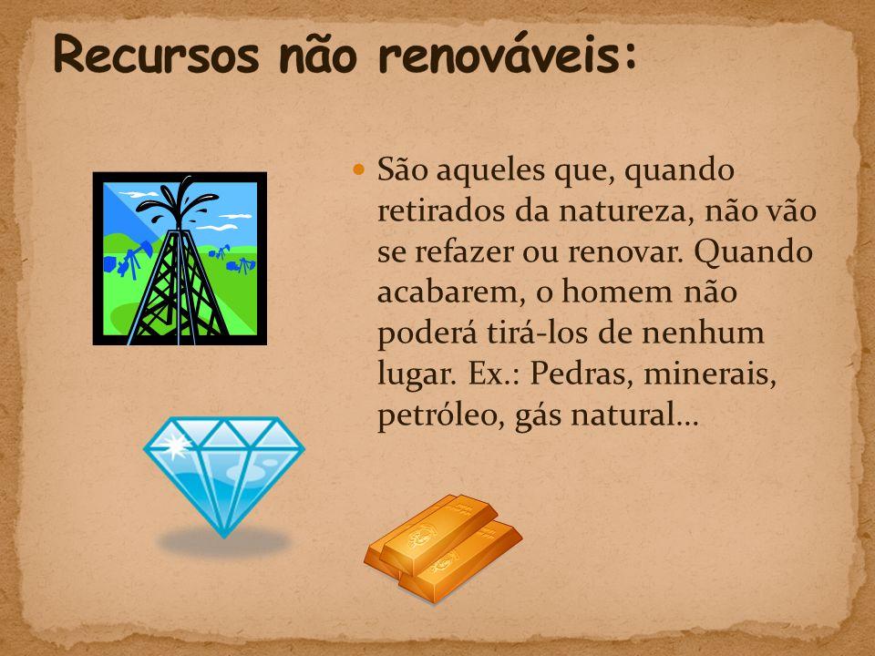  São aqueles que, quando retirados da natureza, não vão se refazer ou renovar.