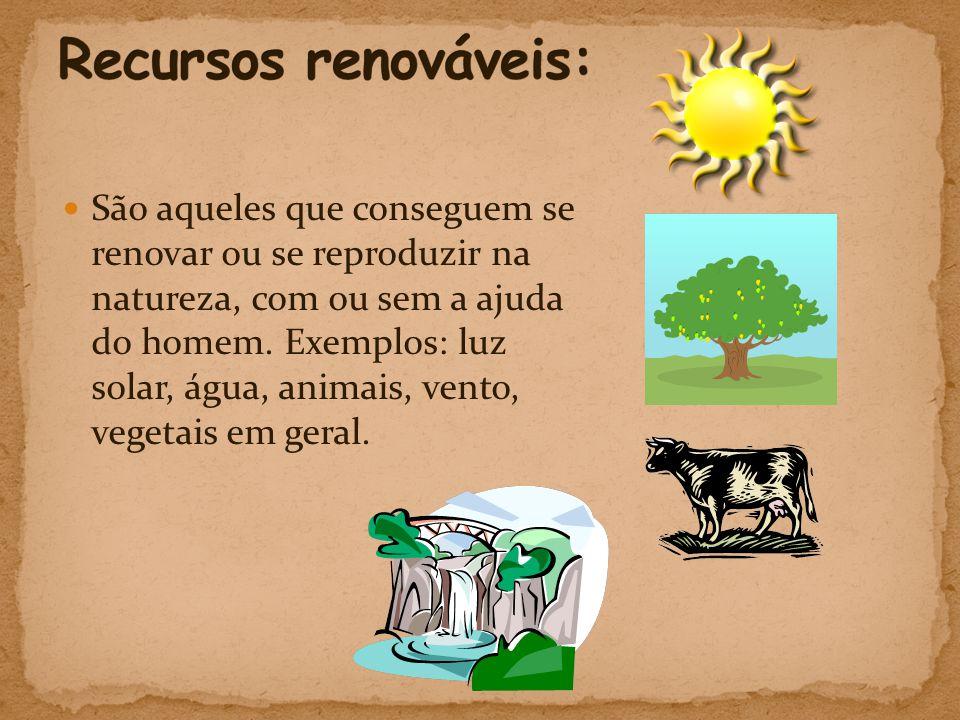  São aqueles que conseguem se renovar ou se reproduzir na natureza, com ou sem a ajuda do homem.