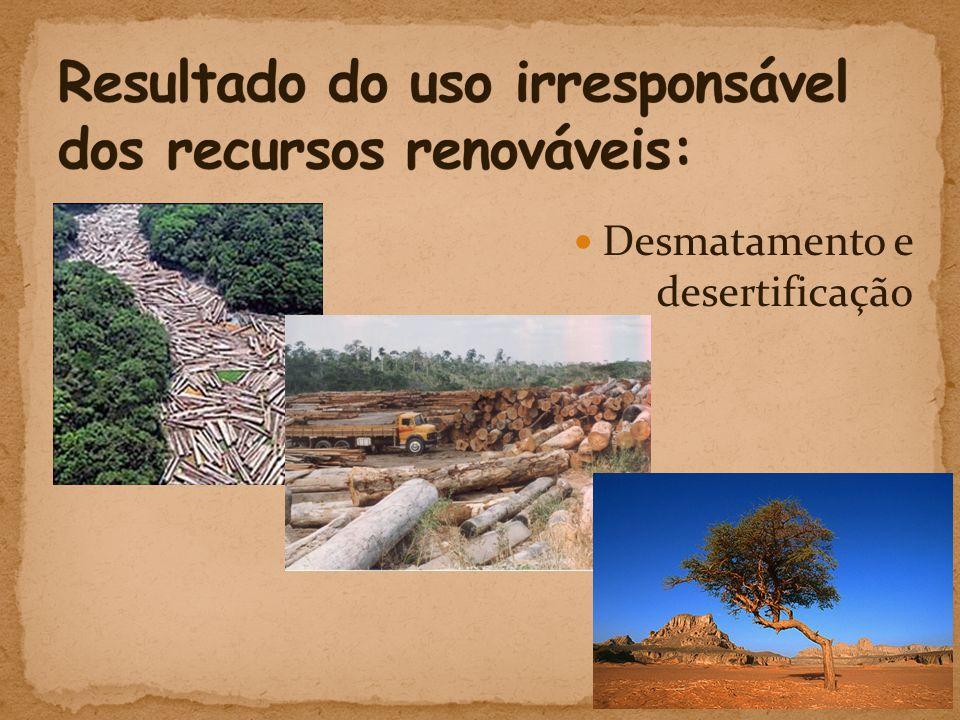  Desmatamento e desertificação