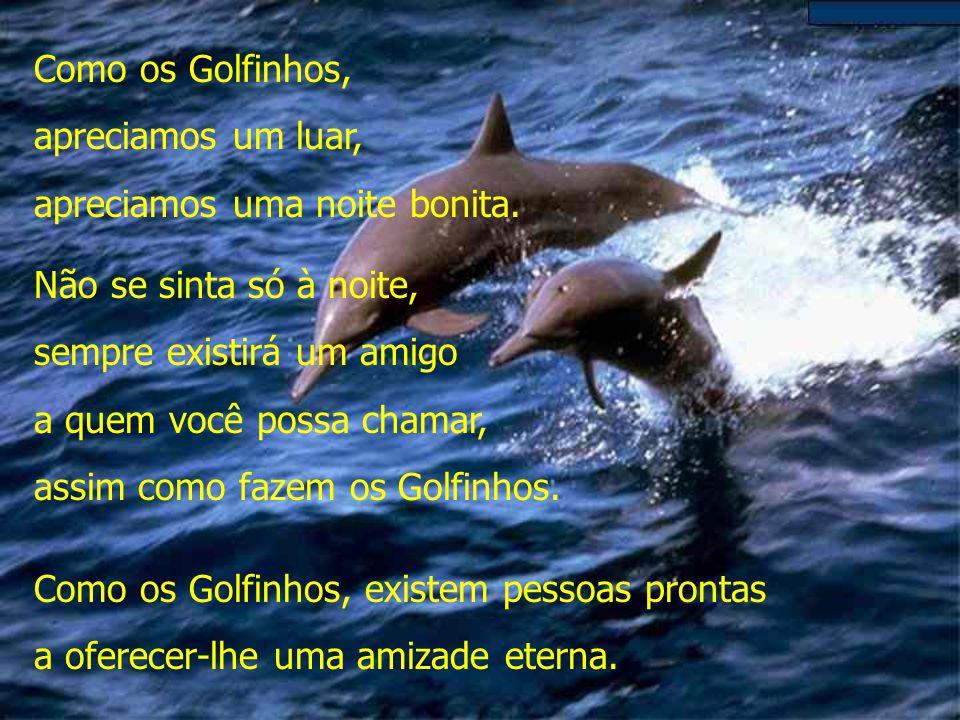 Como os Golfinhos, precisamos de liberdade para podermos viver. Precisamos de liberdade para expressar nossos sentimentos. Mesmo sendo livres, sempre