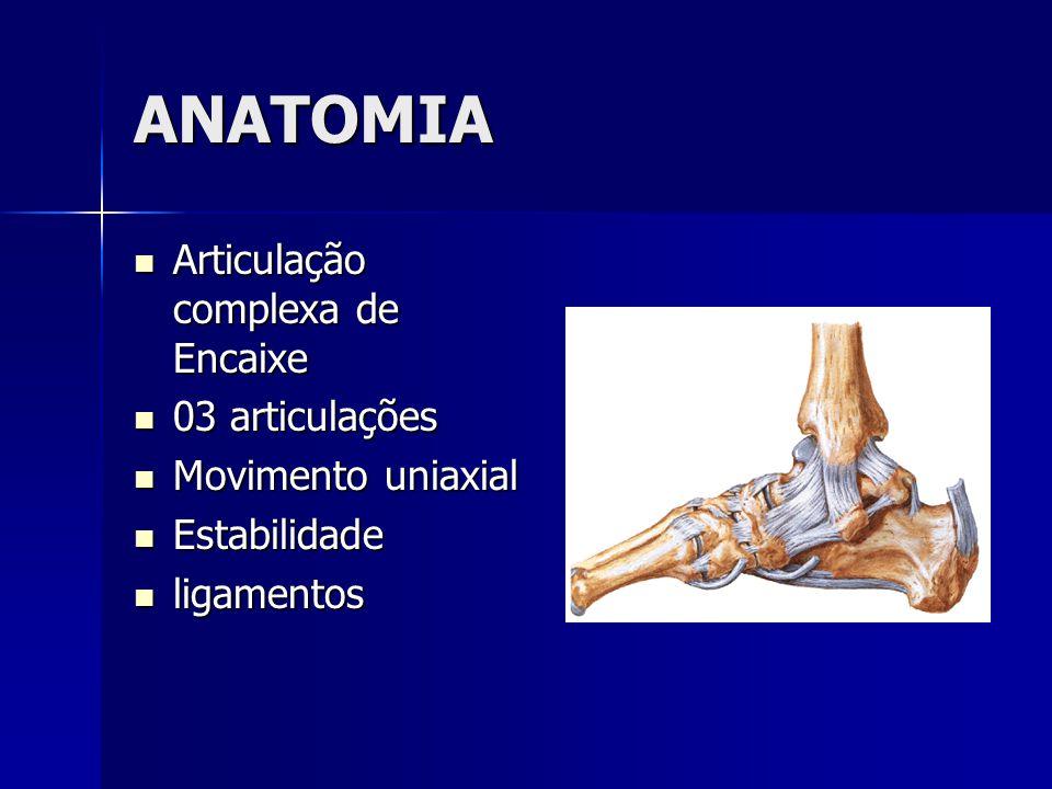ANATOMIA  Articulação complexa de Encaixe  03 articulações  Movimento uniaxial  Estabilidade  ligamentos