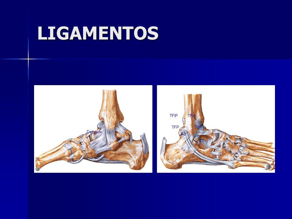 TRATAMENTO LESÃO CRÔNICA  20 a 40% das lesões evoluem com instabilidade e/ou dor.