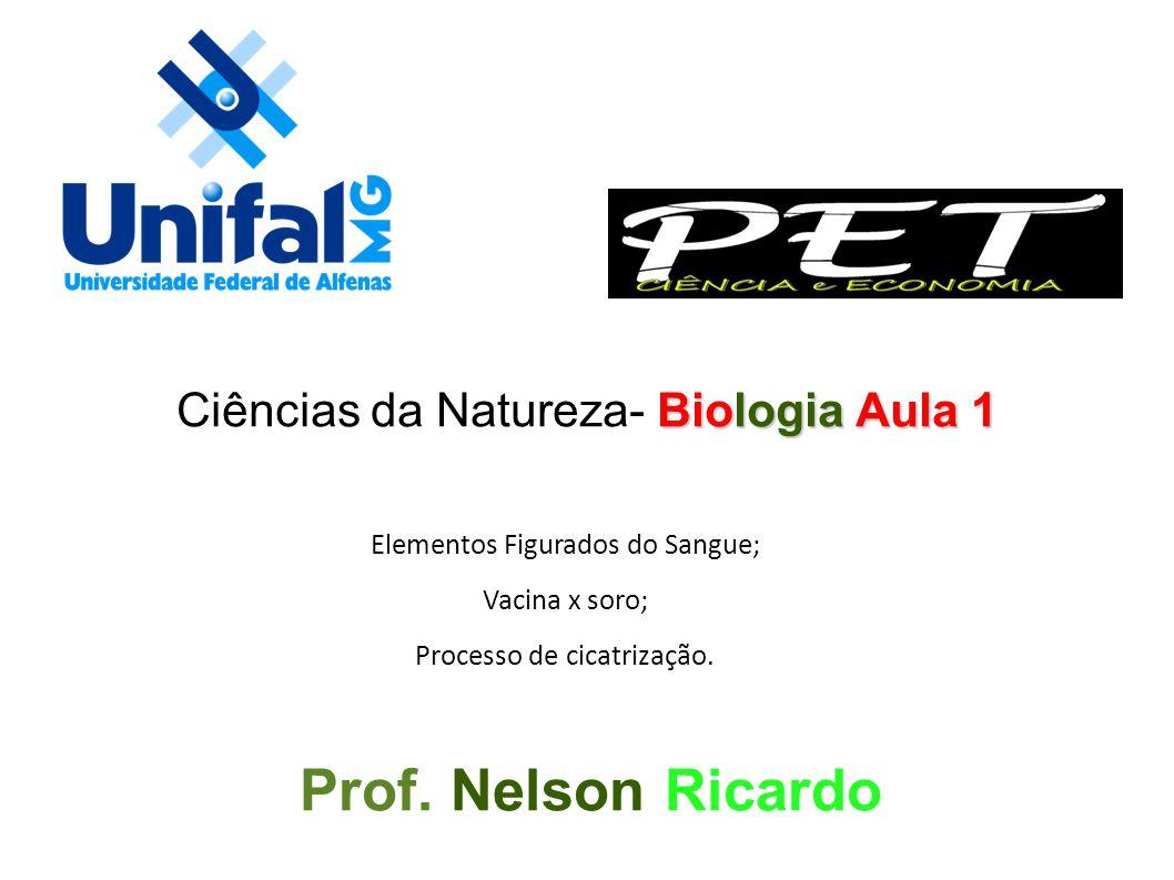 Elementos Figurados do Sangue; Vacina x soro; Processo de cicatrização. Biologia Aula 1 Ciências da Natureza- Biologia Aula 1 Prof. Nelson Ricardo