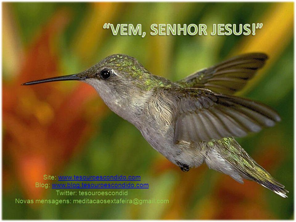 Site: www.tesouroescondido.comwww.tesouroescondido.com Blog: www.blog.tesouroescondido.comwww.blog.tesouroescondido.com Twitter: tesouroescondid Novas mensagens: meditacaosextafeira@gmail.com