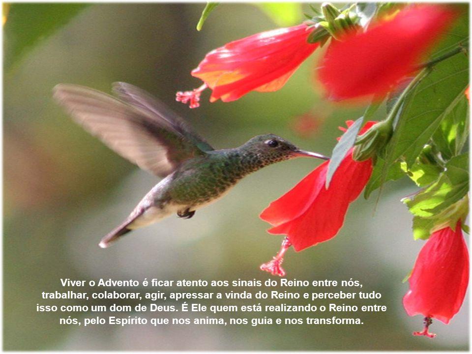 S.Paulo em Romanos 13, 12, diz-nos: A noite vai adiantada, e o dia vem chegando.