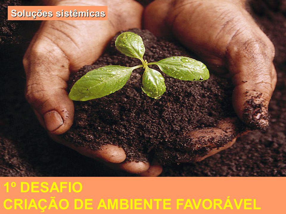 O desenvolvimento local e a MPE 1º DESAFIO CRIAÇÃO DE AMBIENTE FAVORÁVEL Soluções sistêmicas