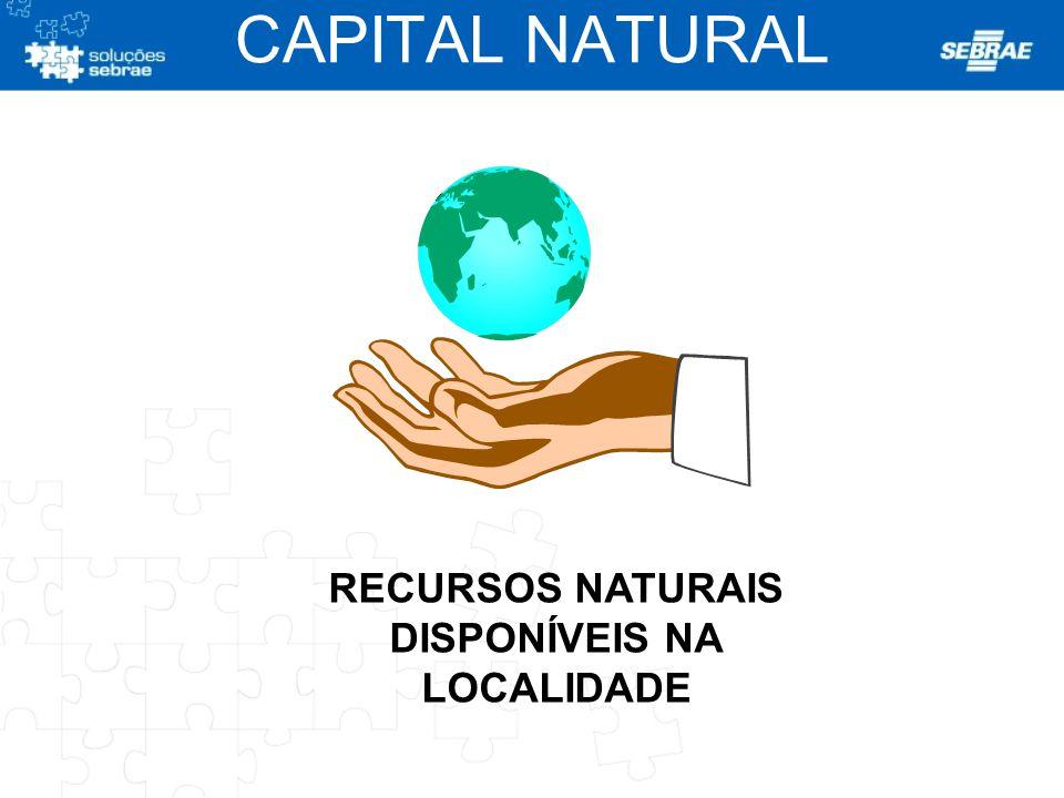 RECURSOS NATURAIS DISPONÍVEIS NA LOCALIDADE CAPITAL NATURAL