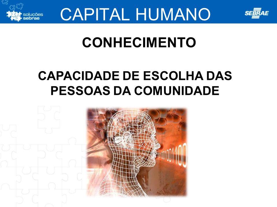 CONHECIMENTO CAPACIDADE DE ESCOLHA DAS PESSOAS DA COMUNIDADE CAPITAL HUMANO