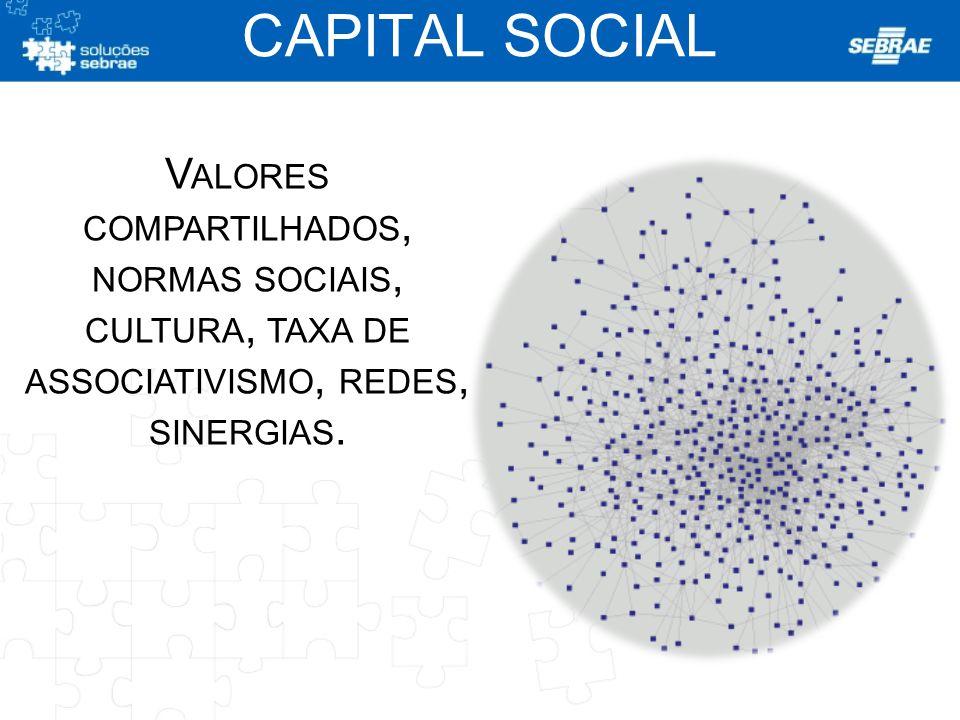V ALORES COMPARTILHADOS, NORMAS SOCIAIS, CULTURA, TAXA DE ASSOCIATIVISMO, REDES, SINERGIAS. CAPITAL SOCIAL