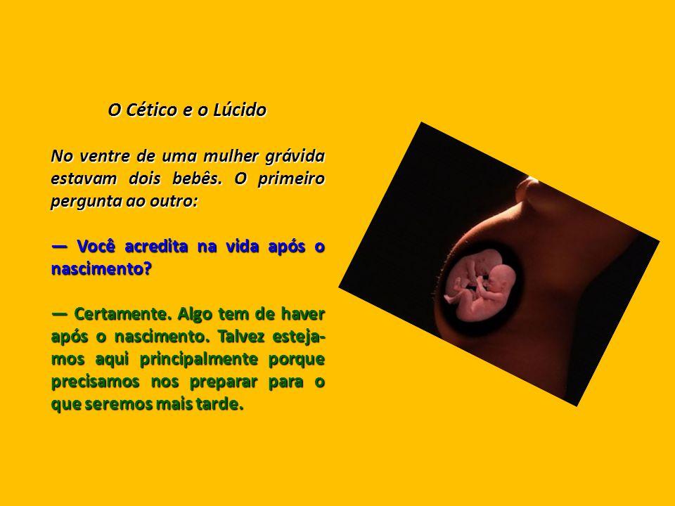 O Cético e o Lúcido No ventre de uma mulher grávida estavam dois bebês.