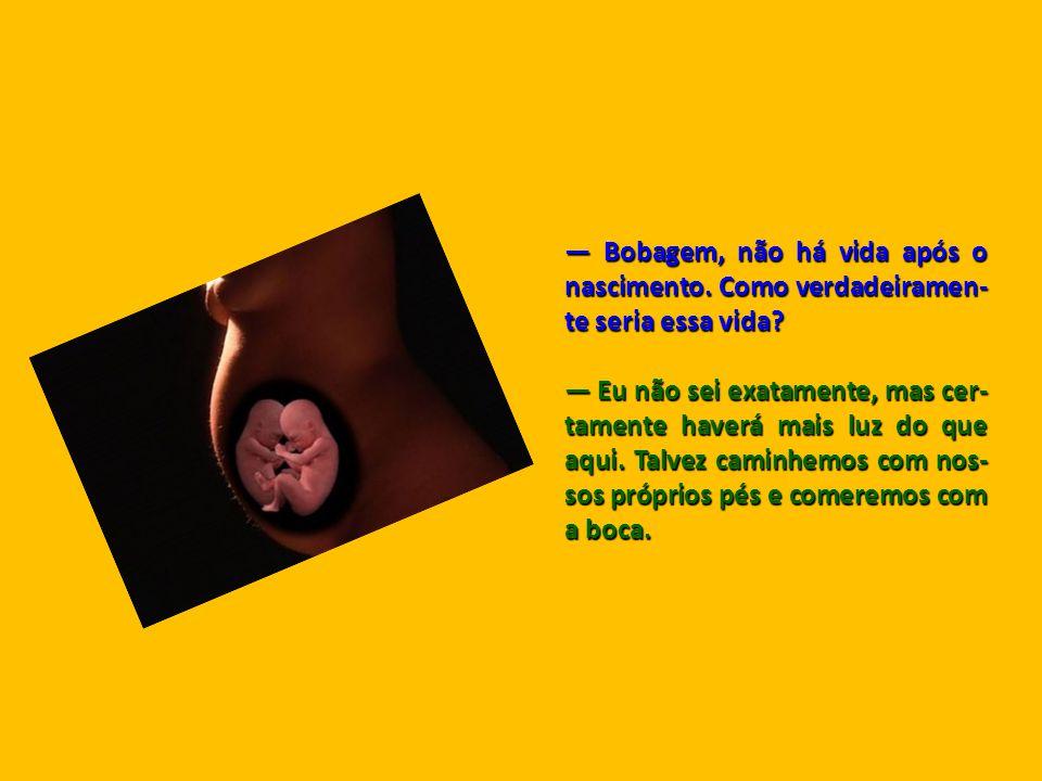 O Cético e o Lúcido No ventre de uma mulher grávida estavam dois bebês. O primeiro pergunta ao outro: — Você acredita na vida após o nascimento? — Cer