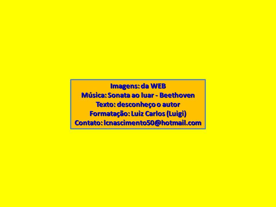 Imagens: da WEB Música: Sonata ao luar - Beethoven Texto: desconheço o autor Formatação: Luiz Carlos (Luigi) Contato: lcnascimento50@hotmail.com