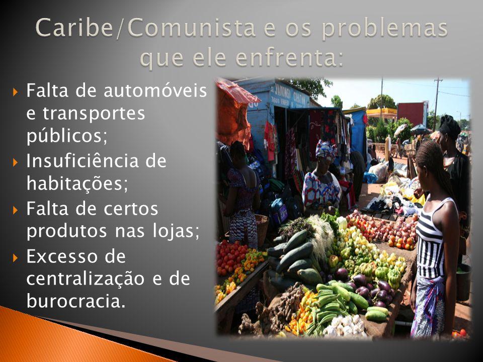  Falta de automóveis e transportes públicos;  Insuficiência de habitações;  Falta de certos produtos nas lojas;  Excesso de centralização e de bur