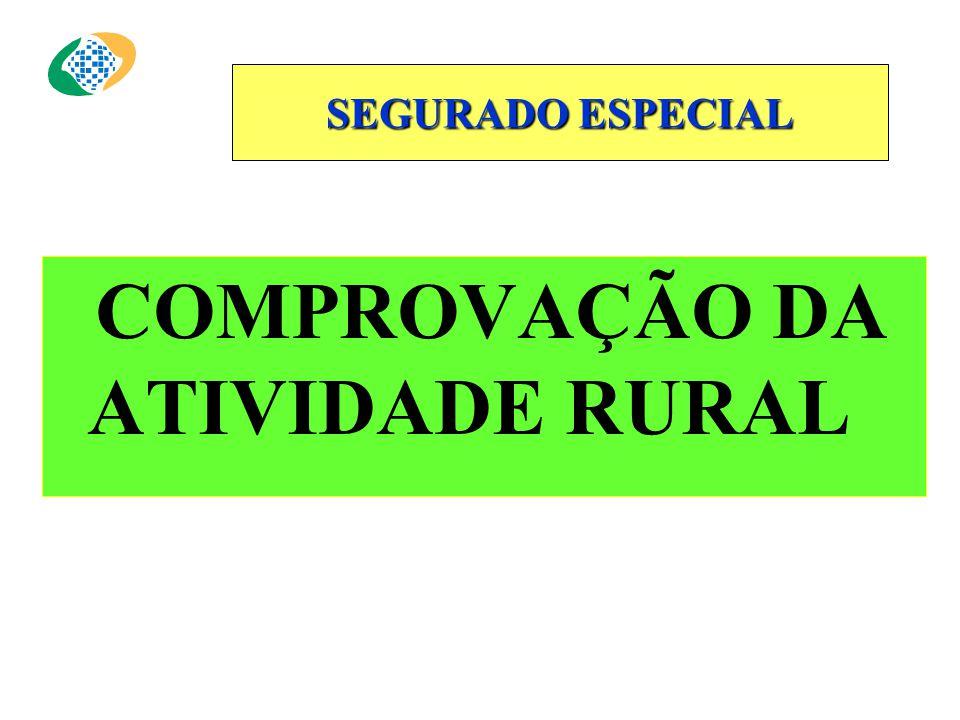 SEGURADO ESPECIAL COMPROVAÇÃO DA ATIVIDADE RURAL