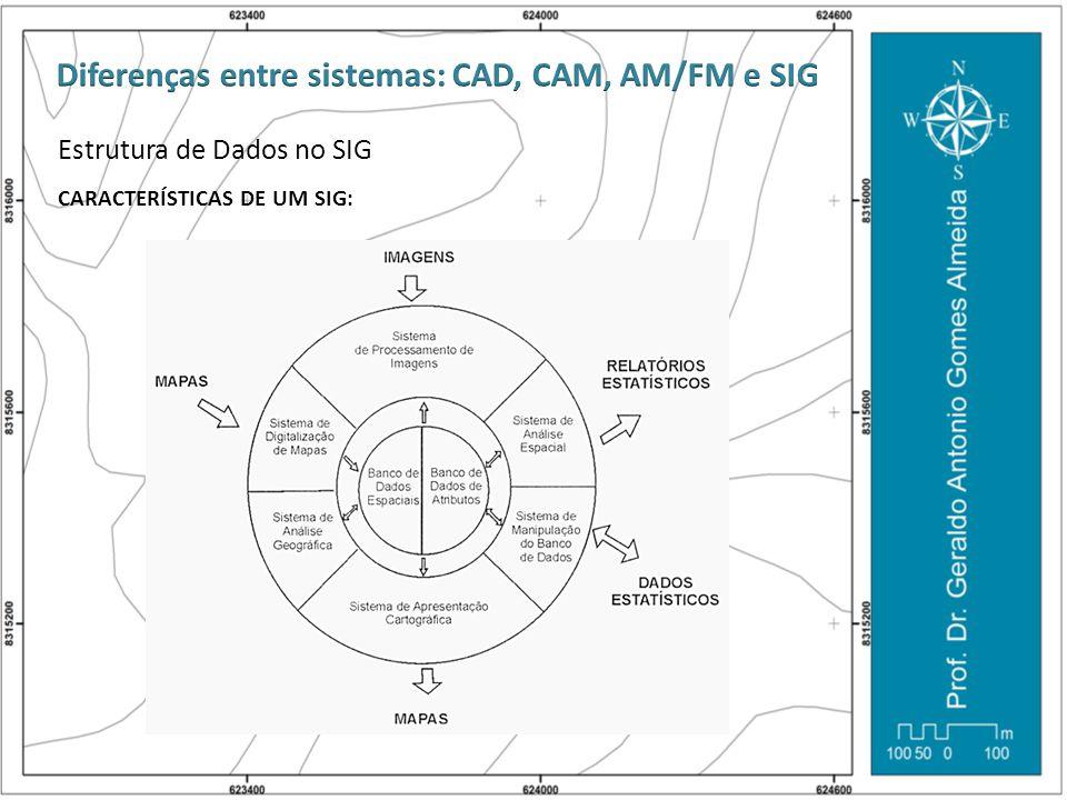 Estrutura de Dados no SIG CARACTERÍSTICAS DE UM SIG: