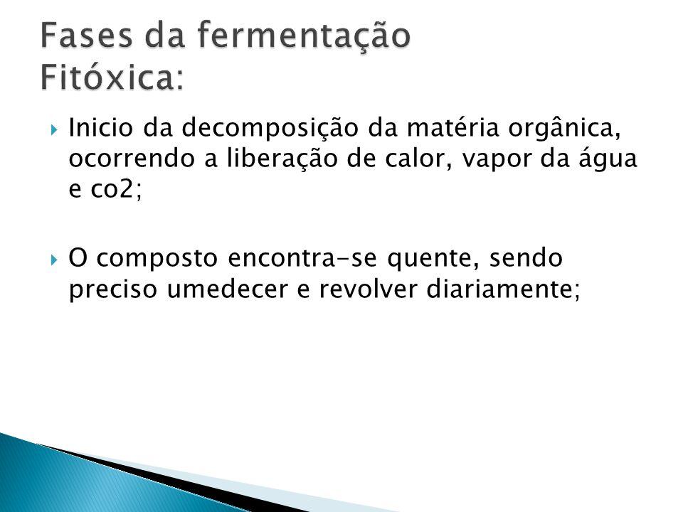  Inicio da decomposição da matéria orgânica, ocorrendo a liberação de calor, vapor da água e co2;  O composto encontra-se quente, sendo preciso umedecer e revolver diariamente;