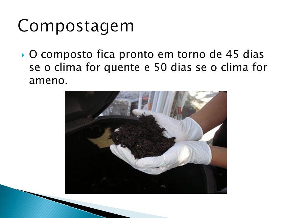  O composto fica pronto em torno de 45 dias se o clima for quente e 50 dias se o clima for ameno.