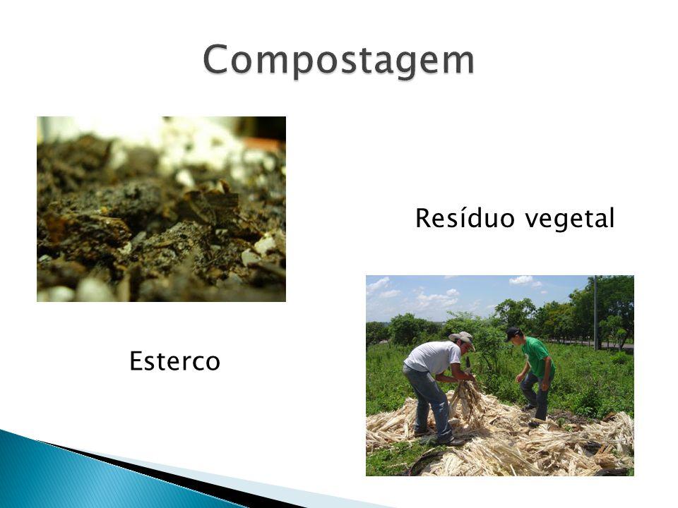 Esterco Resíduo vegetal