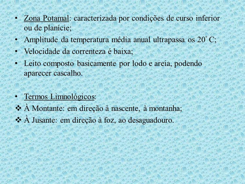 • Zona Potamal: caracterizada por condições de curso inferior ou de planície; • Amplitude da temperatura média anual ultrapassa os 20 º C; • Velocidad