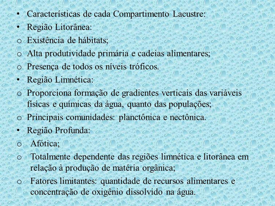 • Características de cada Compartimento Lacustre: • Região Litorânea: o Existência de hábitats; o Alta produtividade primária e cadeias alimentares; o
