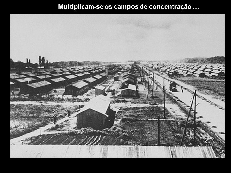 Multiplicam-se os campos de concentração …