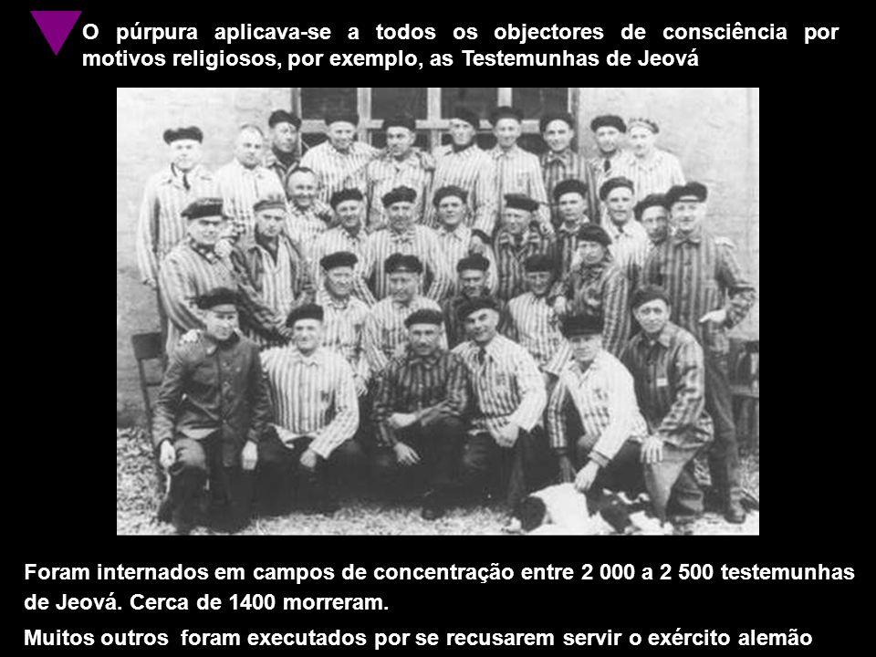 O púrpura aplicava-se a todos os objectores de consciência por motivos religiosos, por exemplo, as Testemunhas de Jeová Foram internados em campos de concentração entre 2 000 a 2 500 testemunhas de Jeová.