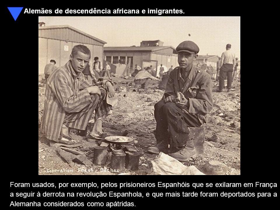 Alemães de descendência africana e imigrantes.