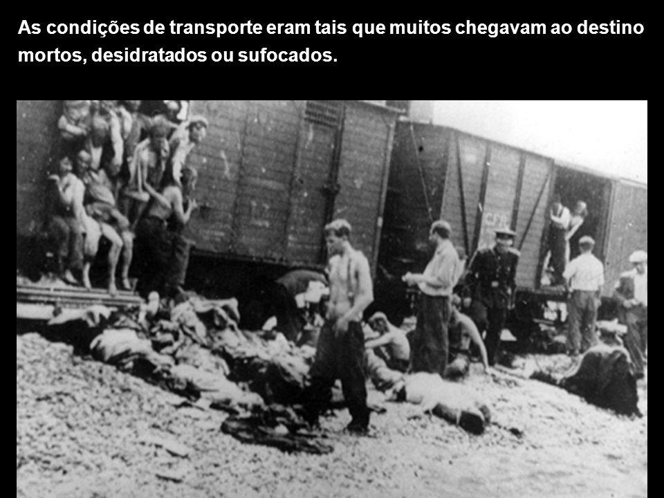 As condições de transporte eram tais que muitos chegavam ao destino mortos, desidratados ou sufocados.