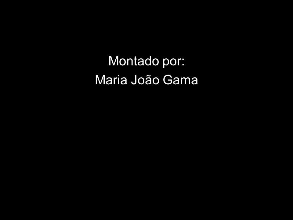 Montado por: Maria João Gama