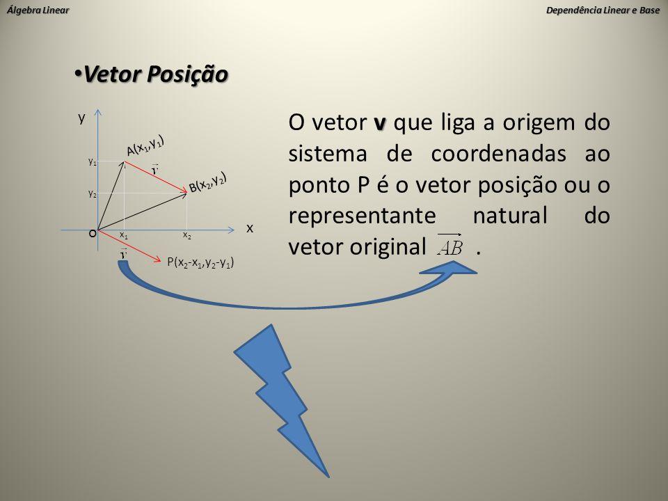 Álgebra Linear Dependência Linear e Base • Vetor Posição x y o A(x 1,y 1 ) B(x 2,y 2 ) y1y1 y2y2 x2x2 x1x1 P(x 2 -x 1,y 2 -y 1 ) v O vetor v que liga