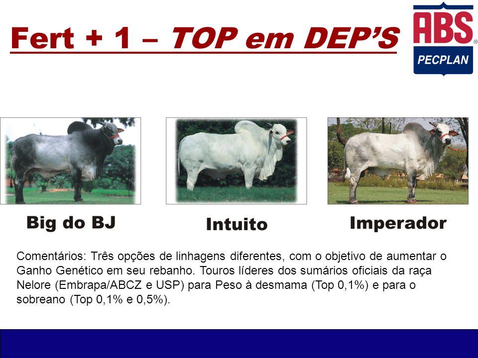 Fert + 1 – TOP em DEP'S Comentários: Três opções de linhagens diferentes, com o objetivo de aumentar o Ganho Genético em seu rebanho. Touros líderes d