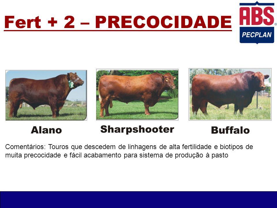 Fert + 3 – Holandês PO Comentários: O Fert + 3 é composto por três excelentes animais da raça Holandês.