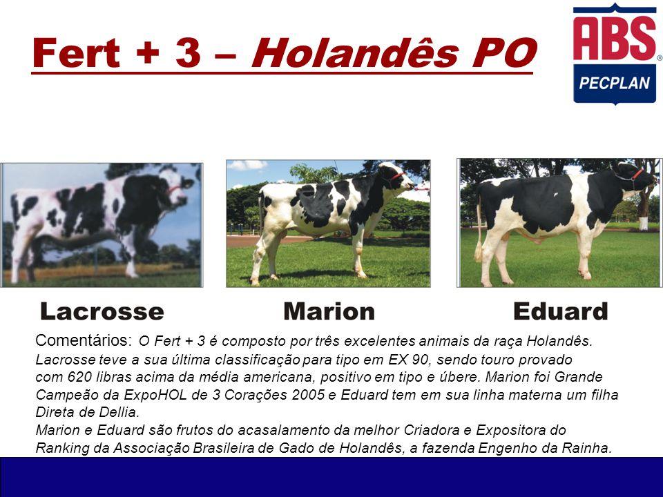Fert + 3 – Holandês PO Comentários: O Fert + 3 é composto por três excelentes animais da raça Holandês. Lacrosse teve a sua última classificação para