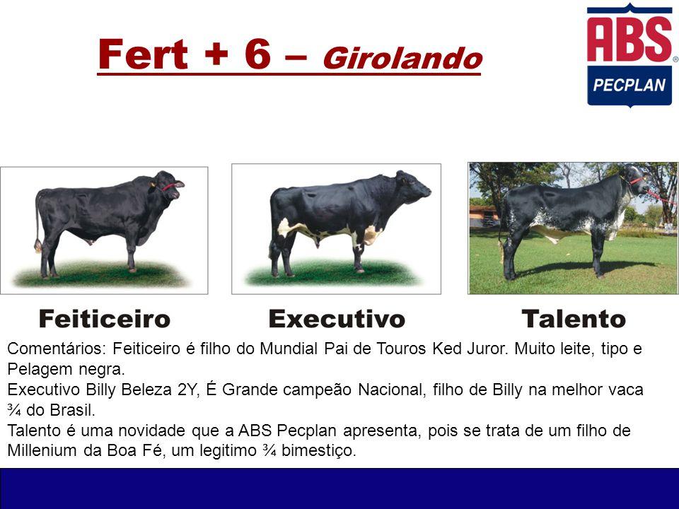 Fert + 6 – Girolando Comentários: Feiticeiro é filho do Mundial Pai de Touros Ked Juror. Muito leite, tipo e Pelagem negra. Executivo Billy Beleza 2Y,