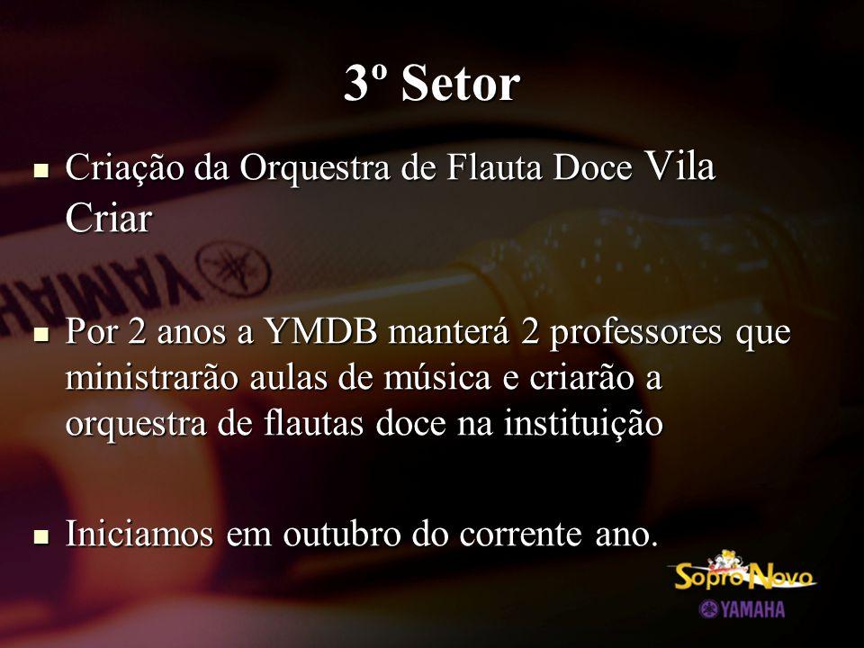 3º Setor  Criação da Orquestra de Flauta Doce Vila Criar  Por 2 anos a YMDB manterá 2 professores que ministrarão aulas de música e criarão a orquestra de flautas doce na instituição  Iniciamos em outubro do corrente ano.