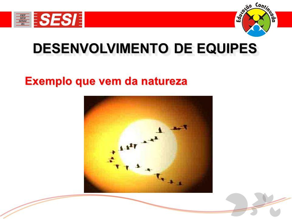 DESENVOLVIMENTO DE EQUIPES Exemplo que vem da natureza