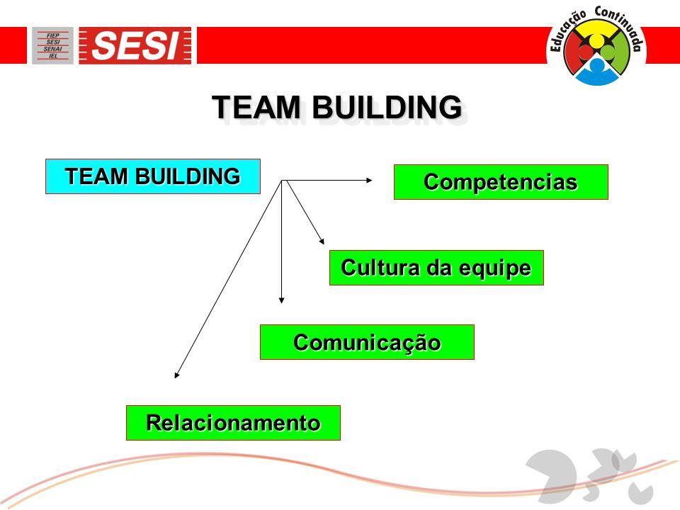TEAM BUILDING Cultura da equipe Relacionamento Competencias Comunicação