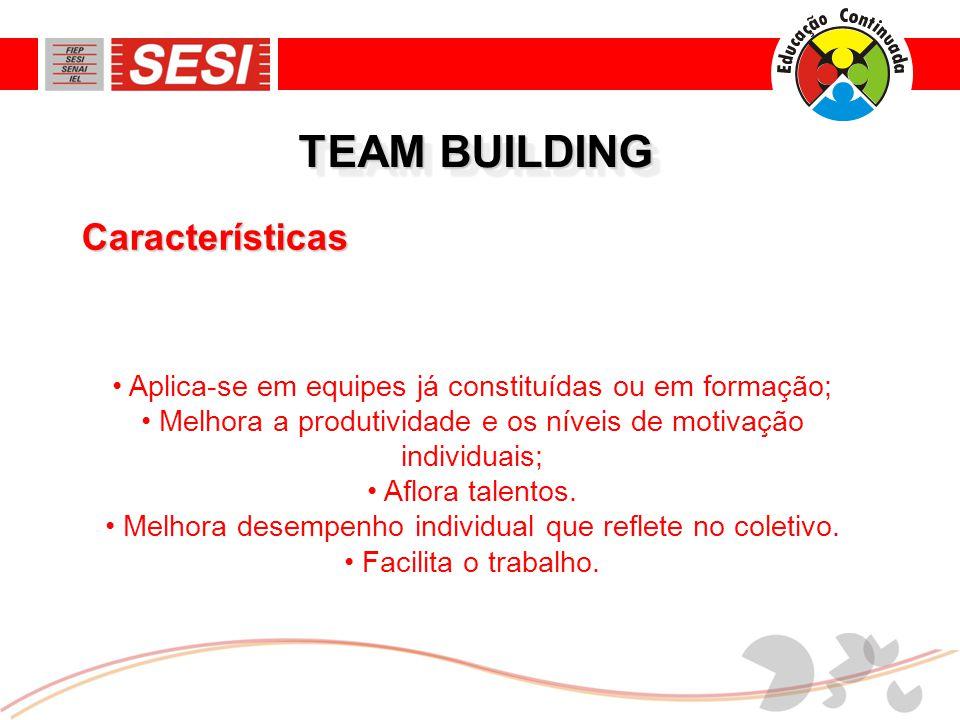TEAM BUILDING • Aplica-se em equipes já constituídas ou em formação; • Melhora a produtividade e os níveis de motivação individuais; • Aflora talentos.