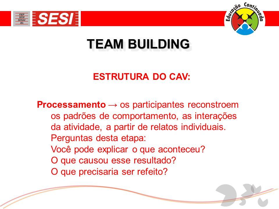 ESTRUTURA DO CAV: Processamento → os participantes reconstroem os padrões de comportamento, as interações da atividade, a partir de relatos individuais.