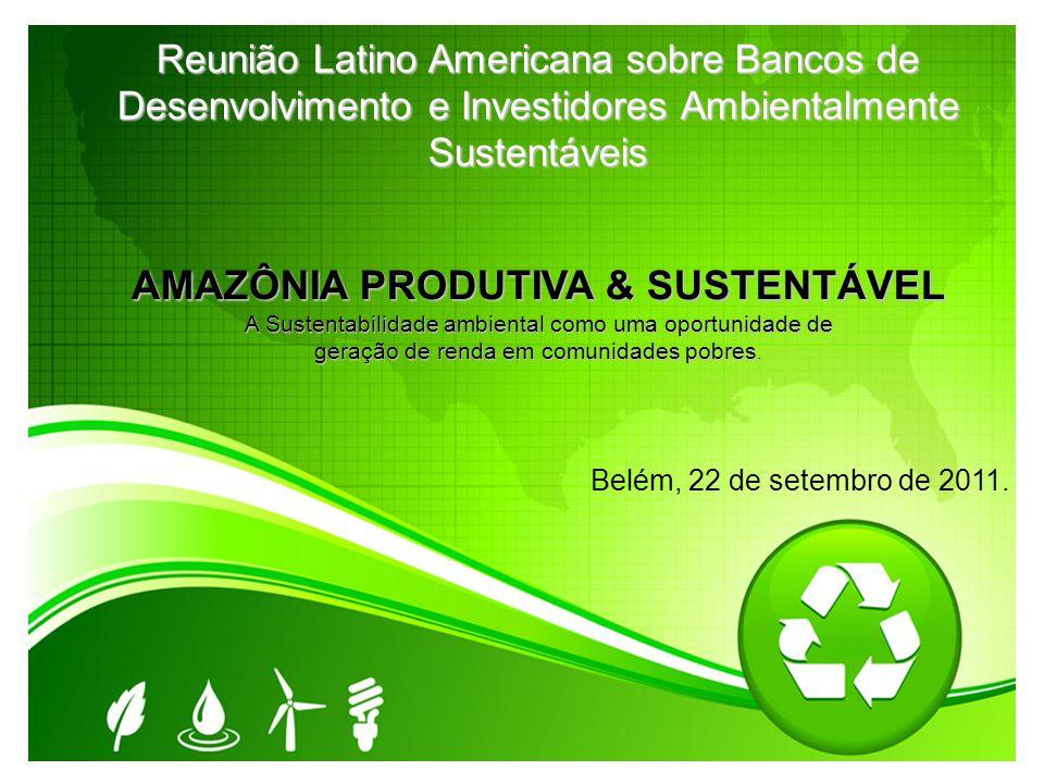 Reunião Latino Americana sobre Bancos de Desenvolvimento e Investidores Ambientalmente Sustentáveis AMAZÔNIA PRODUTIVA & SUSTENTÁVEL A Sustentabilidad