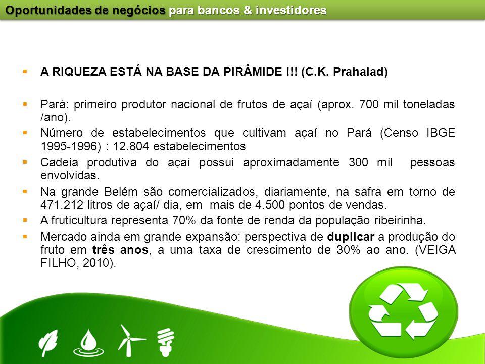 Oportunidades de negócios para bancos & investidores  A RIQUEZA ESTÁ NA BASE DA PIRÂMIDE !!! (C.K. Prahalad)  Pará: primeiro produtor nacional de fr