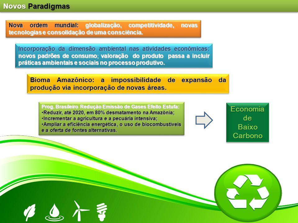 Nova ordem mundial: globalização, competitividade, novas tecnologias e consolidação de uma consciência. Bioma Amazônico: a impossibilidade de expansão