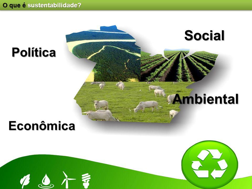 O que é sustentabilidade? Política Econômica Social Ambiental