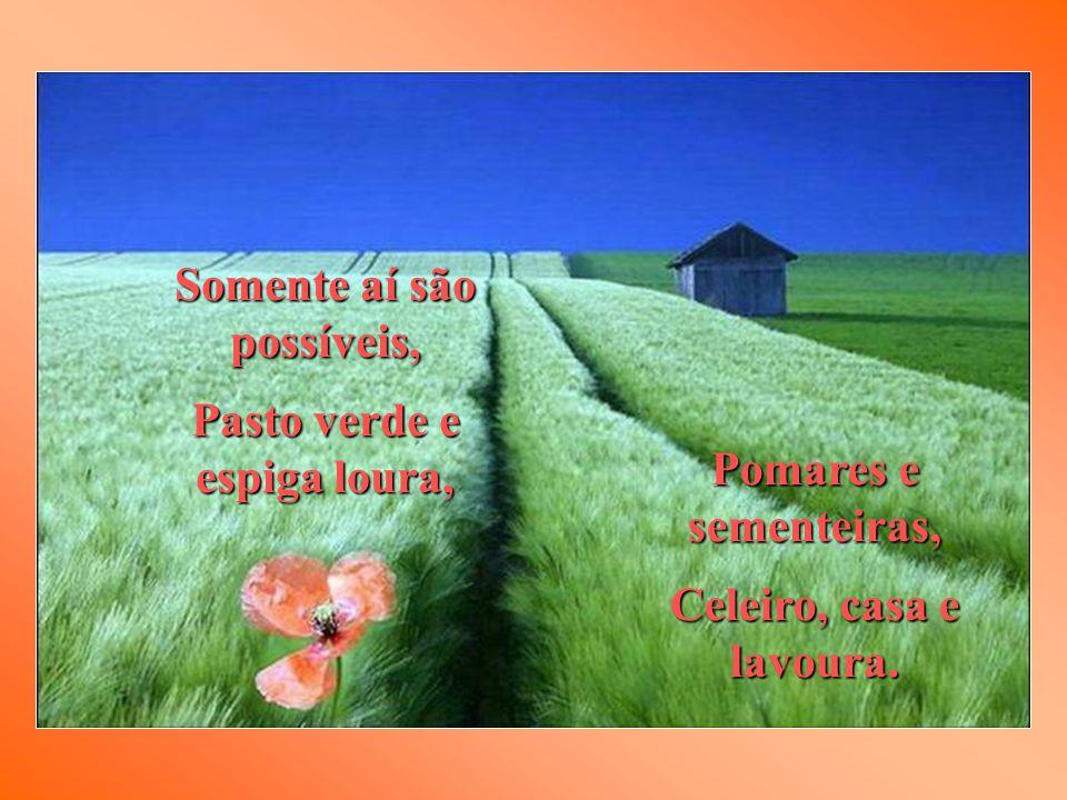 Pomares e sementeiras, Celeiro, casa e lavoura.