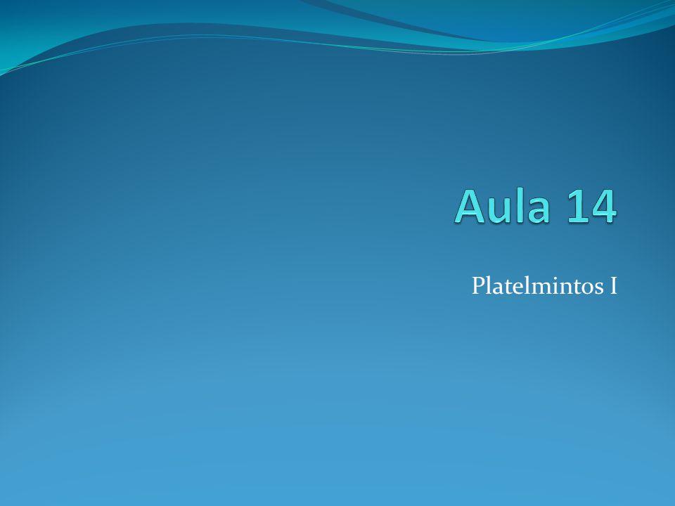 1.O que são platelmintos.