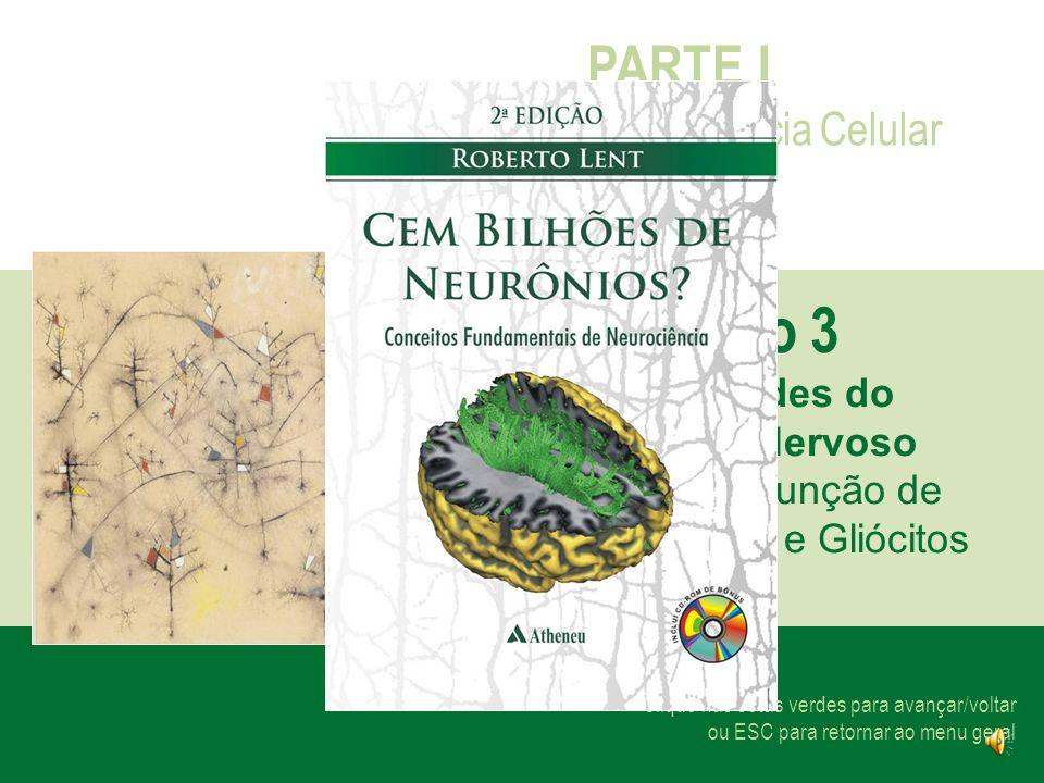 Clique nas setas verdes para avançar/voltar ou ESC para retornar ao menu geral PARTE I Neurociência Celular Capítulo 3 As Unidades do Sistema Nervoso Forma e Função de Neurônios e Gliócitos