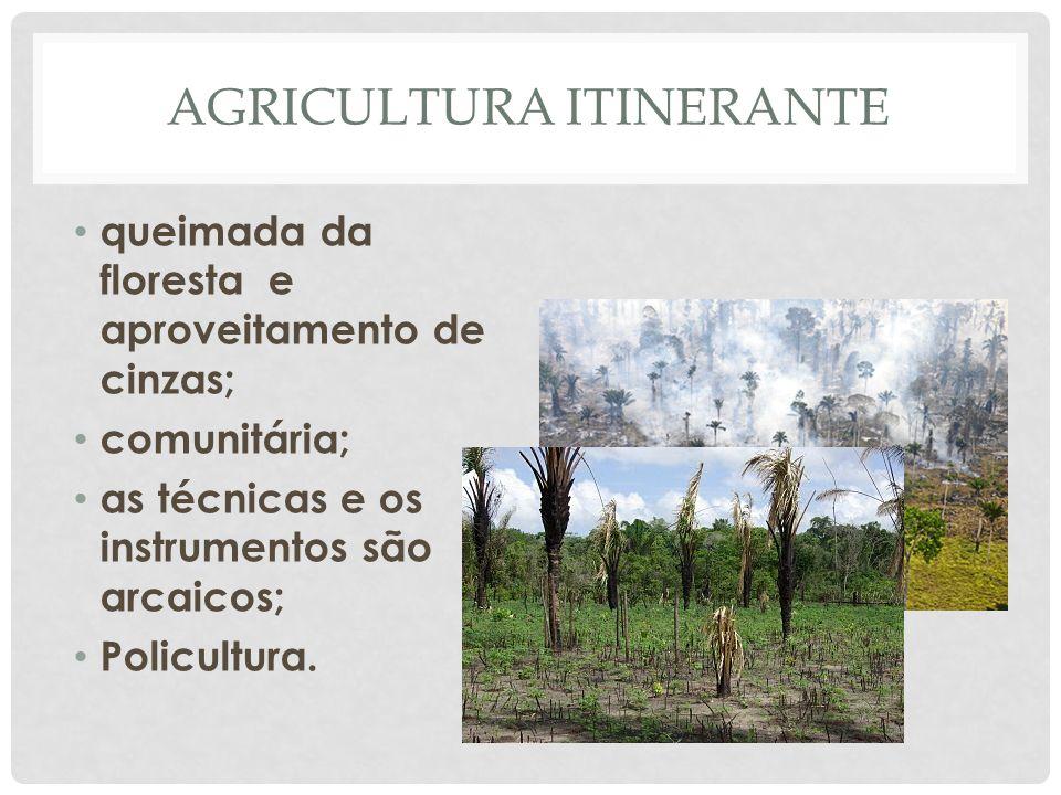 AGRICULTURA ITINERANTE • queimada da floresta e aproveitamento de cinzas; • comunitária; • as técnicas e os instrumentos são arcaicos; • Policultura.