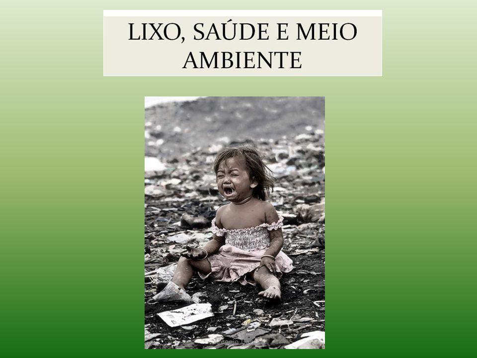 • O LIXO NA HISTÓRIA – Dados arqueológicos indicam que já se queimava lixo na pré história possivelmente para afastamento de odores.