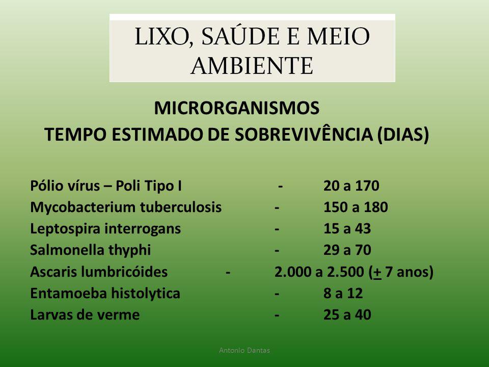MICRORGANISMOS TEMPO ESTIMADO DE SOBREVIVÊNCIA (DIAS) Pólio vírus – Poli Tipo I -20 a 170 Mycobacterium tuberculosis-150 a 180 Leptospira interrogans