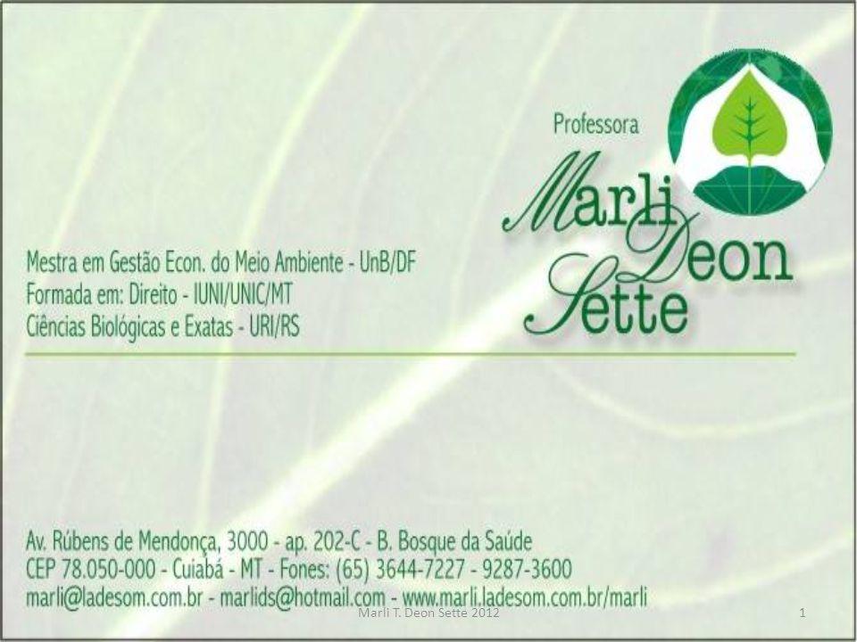 Marli Deon Sette - 20112 PNMA e SISNAMA Estrutura Político- administrativa e Instrumentos • Professora: Ms.